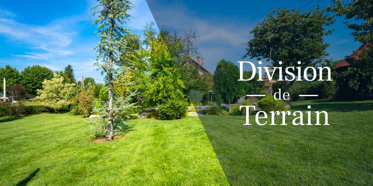 Division De Terrain Comment S Y Prendre En 3 Etapes