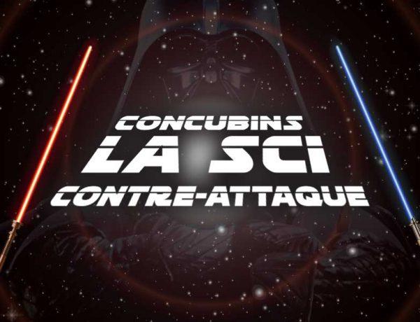 Concubins, la SCI contre-attaque !